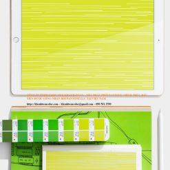 Ứng dụng của Pantone C Color Bridge GG6103A năm 2020